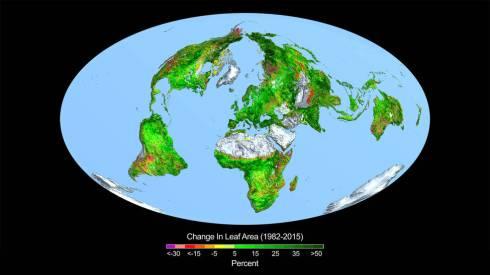 carbon-dioxide-fertilization
